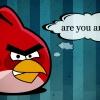 Te mérges vagy? Angry Birds háttérkép
