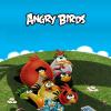 Angry birds mobil háttérkép letoltes