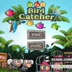 Kivetett háló Angry Birds játék