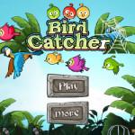 Rio elfogott madarai Angry Birds játék